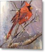 Cardinal - Male Metal Print