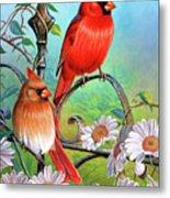 Cardinal Day 3 Metal Print