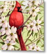 Cardinal In Dogwood Metal Print