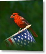 Cardinal On American Flag Metal Print