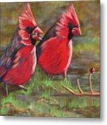 Cardinal Two Metal Print