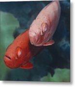 Cardinalfishes Metal Print