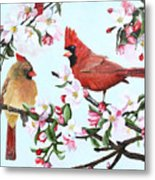 Cardinals And Apple Blossoms Metal Print