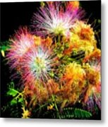 Care For A Mimosa Metal Print