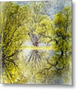 Caress In The Mist Metal Print