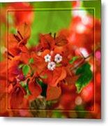 Caribbean Floral Surprise Metal Print