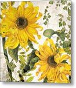 Carina Sunflowers Metal Print