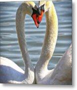 Caring Swans Metal Print