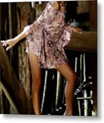 Carla's In The Barn Again Metal Print