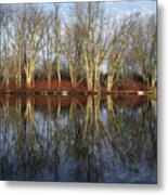 Carleton Place On The Mississippi - 38 Metal Print