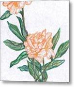 Carnation Flower Metal Print