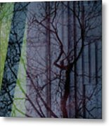 Carnegiewindowreflect Metal Print