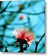 Carolina Flower And Bird Metal Print