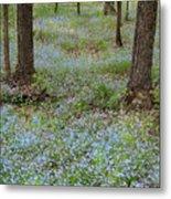 Carpet Of Blue Metal Print