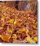 Carpet Of Fall Leaves Metal Print