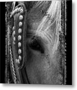 Carriage Horse B And W Metal Print