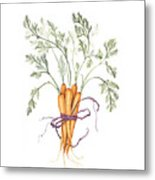Carrot Harvest Metal Print