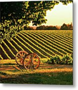 Cart Wheels At Barossa Valley Vineyard, South Australia Metal Print by Peter Walton Photography
