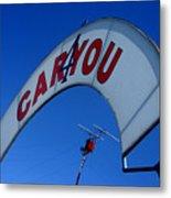 Caryou Metal Print