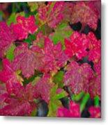 Cascade Autumn Leafs 7 Metal Print