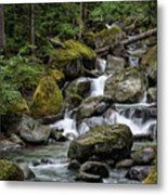 Cascade In The Rainforest Metal Print