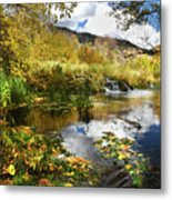 Cascade Springs Large Pool  Metal Print