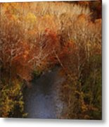 Cascade Valley Afternoon Metal Print