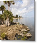 Castaway Point On The Indian River Lagoon With Coquina Rock Metal Print