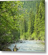Casting To Cutthroats On The Oldman River Metal Print
