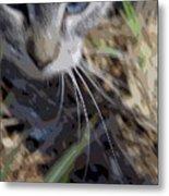 Cat A Hunting Metal Print