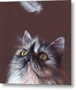 Cat And Feather Metal Print