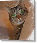 Cat Desire. Metal Print