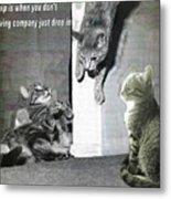 Cat Dropping In Metal Print
