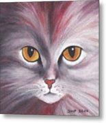 Cat Eyes Red Metal Print