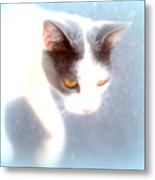 When You Are A Cat You Have A Different Perspective   Metal Print