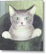 Cat In A Bucket Metal Print