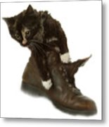 Cat In Boot Metal Print