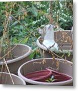 Cat In Flowerpot Metal Print