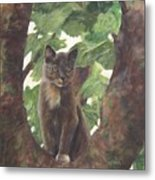Cat In Tree Metal Print