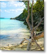 Cat Island Cove Metal Print