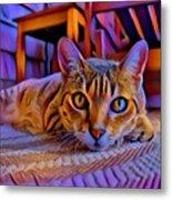 Cat Laying On Braided Rug Metal Print