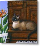 Cat Missy On Piano Metal Print