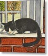 Cat Nap In Window Metal Print