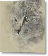 Cat, Nikita Il Gatto. Metal Print