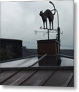 Cat On A Cool Tin Roof Metal Print