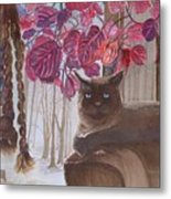 Cat On A Foggy Day Metal Print