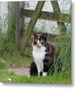 Farm Cat On Duty Metal Print