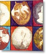Cat Planets Metal Print