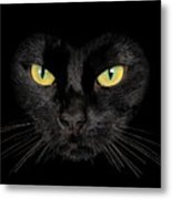 Cat T-shirt Metal Print