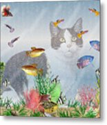 Cat Watching Fishtank Metal Print